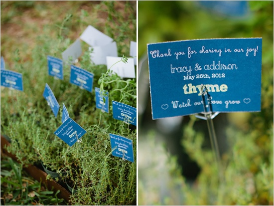 Herbs being used as wedding favours.