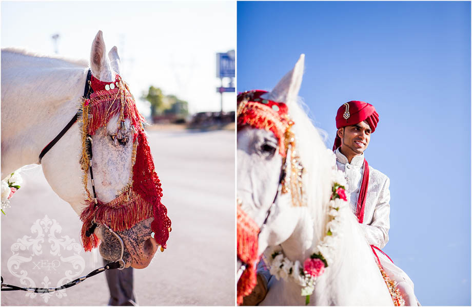 groom on his white horse