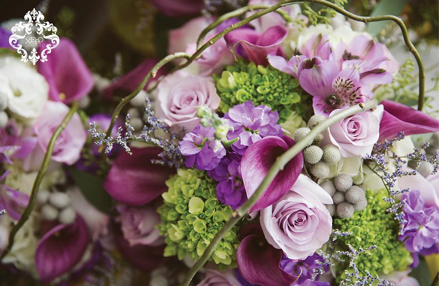 purple blooms | xerodigital.ca